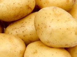 aardappels kopen